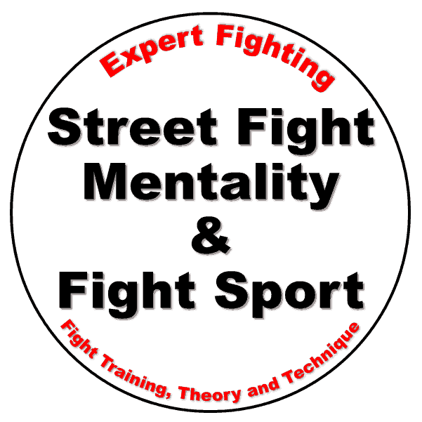 Street-Fight-2 Expert Fighting